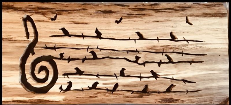 """""""Birds On Barbed Wire"""""""