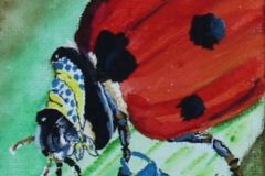 """Lady Bug in a Scarf"""